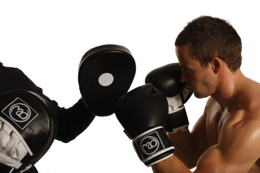 Fitness Mad Leather Hook & Jab Pads