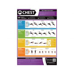 PosterFit Chest Chart