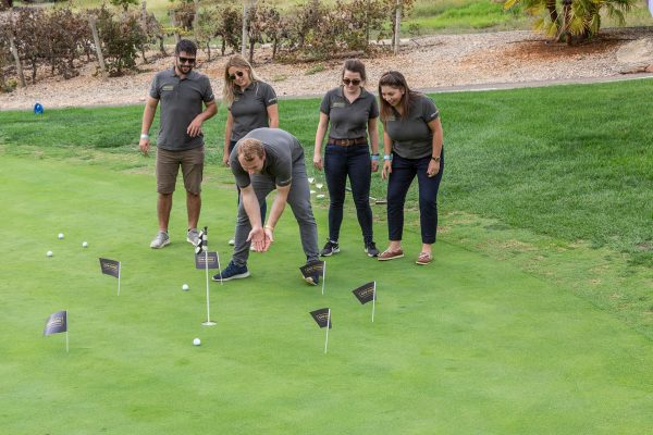 The Pinmar Golf